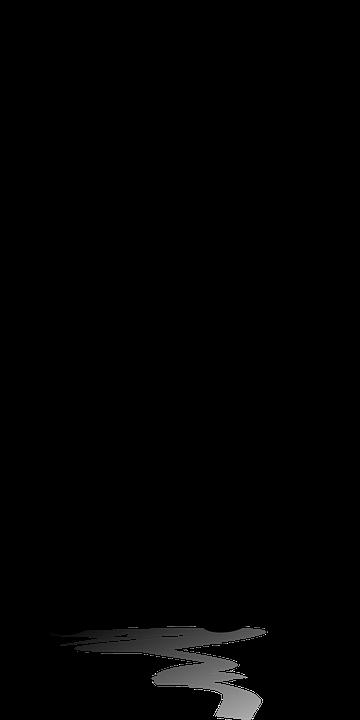 ön muhasebe programı